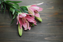 Lilies on a wooden background Royalty Free Stock Images