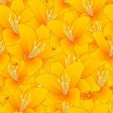 Lilium candidum, o lírio de Madonna ou a laranja Lily Seamless Background Ilustração do vetor ilustração stock