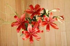 Lilium Flower Stock Photo