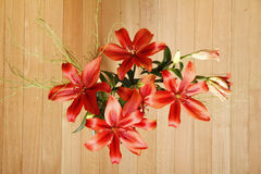 Lilium Flower Royalty Free Stock Photography