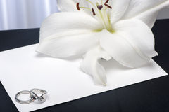 A  Lilium and wedding rings Royalty Free Stock Photo