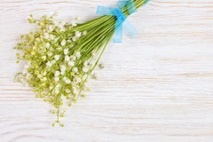 liliy of the valley Stock Images