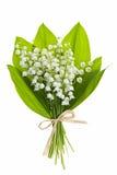 Lilja-av--dalen blommar på vit Royaltyfri Fotografi