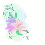 Liljablommor Arkivbild