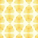 Liljamodellbakgrund Royaltyfri Bild
