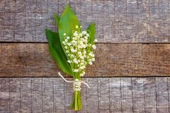 Liljekonvalj eller kunna-lilja royaltyfri foto