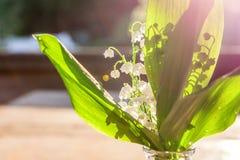 Liljekonvalj eller kunna-lilja royaltyfria foton