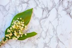 Liljekonvalj eller kunna-lilja på marmorbakgrund arkivfoton