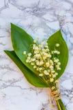 Liljekonvalj eller kunna-lilja på marmorbakgrund arkivbild