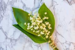 Liljekonvalj eller kunna-lilja på marmorbakgrund royaltyfri foto