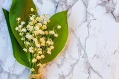 Liljekonvalj eller kunna-lilja på marmorbakgrund royaltyfria foton
