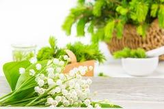 Liljekonvalj naturliga boter Arkivfoton