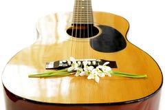 Liljekonvalj på gitarrrader Royaltyfri Foto