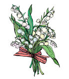 Liljekonvalj - tappning inristad illustration av vårfloen Royaltyfria Foton