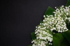 Liljekonvaljblommor p? en svart bakgrund 7 royaltyfria bilder