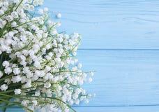Liljekonvaljen som är härlig på den dekorativa blom- våren för blå träberöm, blommar hälsningar Arkivbild