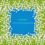 Liljekonvaljgräns, ram, vårbukett av den delikata blomman, blom- baner, vektorillustration Vita knoppskogblommor stock illustrationer