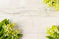Liljekonvaljram arkivbilder