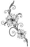 Liljor blommor Fotografering för Bildbyråer