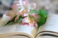 Liljor på sidorna av en öppen bibel royaltyfri fotografi