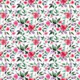Lillà rosa dei wildflowers di erbe rosa delicati teneri variopinti meravigliosi eleganti floreali della molla con il modello dell royalty illustrazione gratis