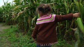 Lilla flickan drar av örat av havre arkivfilmer