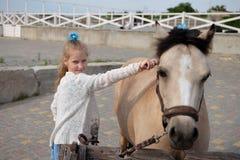 Lilla flickan gör ren och kammar hennes ponny och sadlar honom royaltyfri bild