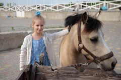 Lilla flickan gör ren och kammar hennes ponny och sadlar honom arkivbild