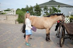 Lilla flickan gör ren och kammar hennes ponny och sadlar honom arkivfoto