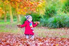 Lilla flickan i en höst parkerar Royaltyfria Bilder