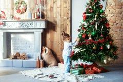 Lilla flickan i pyjamas dekorerade julgranen Begreppet av Fotografering för Bildbyråer