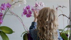 Lilla flickan med vitt lockigt hår tar omsorg för blommorna hemma arkivfilmer