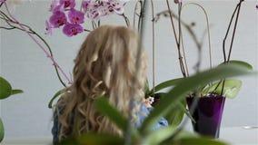 Lilla flickan med vitt lockigt hår tar omsorg för blommorna hemma lager videofilmer