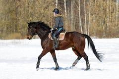 lilla flickan rider en häst Slut upp En kvinna rider en häst utbildning hippodrome S arkivbild