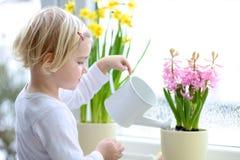 Lilla flickan som bevattnar våren, blommar hemma Royaltyfri Fotografi