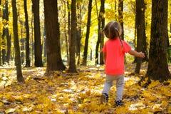 Lilla flickan som går i höst, parkerar och ser på träd royaltyfria foton