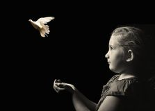 Lilla flickan som släpper en vitduva från händer Royaltyfria Foton