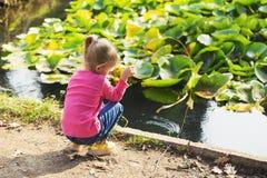 Lilla flickan som spelar i, parkerar vid dammet royaltyfri fotografi