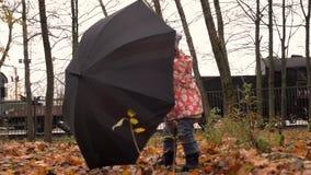 Lilla flickan som spelar med britt flagga-som paraplyet i höst, parkerar Dåligt väderbegrepp skott för steadicam 4K lager videofilmer