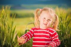 Lilla flickan spelar med mellan gröna korn på bygd Royaltyfria Bilder