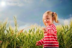 Lilla flickan spelar med mellan gröna korn på bygd Fotografering för Bildbyråer