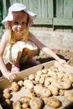 Lilla flickan visar upp hennes egen potatis - hon är stolt royaltyfria bilder