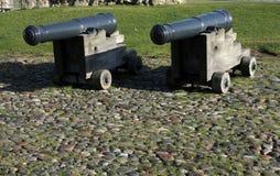 lilla kanoner Royaltyfri Fotografi