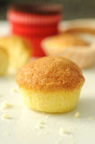 lilla muffiner Arkivfoton