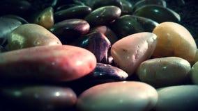 Lilla pebbles Royaltyfria Foton