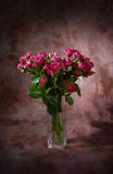 lilla rosa ro för bukett Arkivbilder