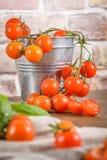 lilla tomater för Cherryred Royaltyfria Foton