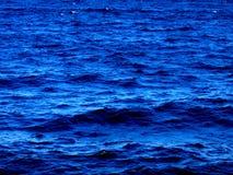 lilla waves Arkivfoto