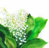 Lillies. Warecolor drawing of lily of the valley royalty free illustration