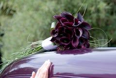 Lillies del calla della Borgogna Immagine Stock